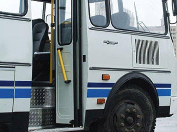 в схеме движения автобусов